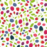 Seamless pattern with Cherry Strawberry Raspberry Blackberry Blueberry Cranberry Cowberry Goji Grape isolated on white background. Vector illustration Stock Image