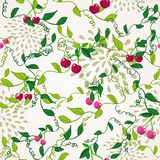 Seamless pattern with cherry Royalty Free Stock Photo