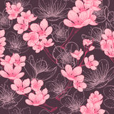Seamless pattern with cherry tree blossom. Vintage hand drawn vector illustration Royalty Free Stock Photography