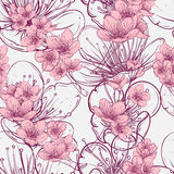 Seamless pattern with cherry tree blossom. Vintage hand drawn vector illustration Stock Photos