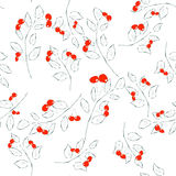 Seamless pattern with cherry. Vector illustration. Stock Image