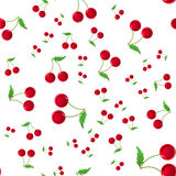 Seamless pattern with cherry on white background.  texture for textile, wrapping, wallpapers and other surfaces. Royalty Free Stock Photo