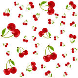 Seamless pattern with cherry on white background. vector texture for textile, wrapping, wallpapers and other surfaces. Royalty Free Stock Photo