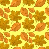 Seamless pattern with chestnut and beech autumn leaves. royalty free illustration