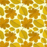 Seamless pattern with chestnut and elm autumn leaves. vector illustration