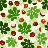 Seamless pattern with chestnuts and green chestnut Stock Images