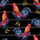 Seamless pattern of chicken. Stock Photo