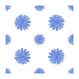 Seamless pattern with chicory flower. On white background Royalty Free Stock Photography