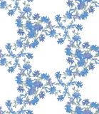 Seamless pattern with chicory. Round kaleidoscope of flowers and floral elements Royalty Free Stock Image