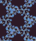 Seamless pattern with chicory. Round kaleidoscope of flowers and floral elements Stock Image