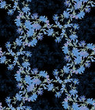 Seamless pattern with chicory. Round kaleidoscope of flowers and floral elements Stock Photography