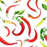 Seamless pattern with chili peppers and leaves painted with watercolor Royalty Free Stock Photography