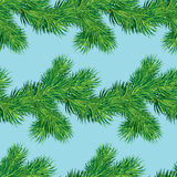 Seamless pattern with Christmas fir tree branch, winter holiday Royalty Free Stock Photos