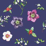 Seamless Pattern with Christmas Flowers Royalty Free Stock Image
