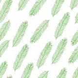 Seamless pattern with Christmas tree branch on white. Vector illustration. Seamless pattern with Christmas tree branch on a white background. Vector illustration Royalty Free Stock Photo