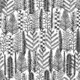 Seamless pattern with christmas tree a. Nd pine fir branches, hand drawn vector illustration, winter holiday background Stock Photo