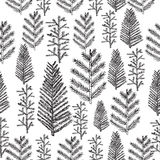 Seamless pattern with christmas tree. And pine fir branches, hand drawn vector illustration, winter holiday background Stock Photography