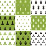 Seamless pattern with Christmas trees Stock Photos