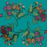 Seamless pattern with chrysanthemum Royalty Free Stock Photo