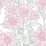 Seamless pattern of chrysanthemum Stock Photo