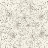 Seamless pattern from chrysanthemums Stock Image