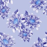 Seamless pattern with chrysanthemums 10 royalty free illustration