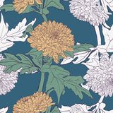 Seamless pattern with chrysanthemums Stock Photo