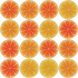 Seamless pattern with citrus-fruit Royalty Free Stock Photos