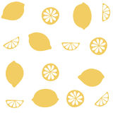 Seamless  pattern with citrus fruit clices Stock Photo