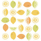 Seamless  pattern with citrus fruit clices Royalty Free Stock Photo