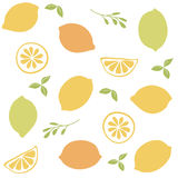 Seamless  pattern with citrus fruit clices Royalty Free Stock Photos