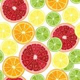 Seamless pattern with  citrus fruit - grapefruit, orange, lime a Stock Image
