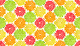 Seamless pattern with citrus fruits Royalty Free Stock Photography