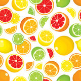 Seamless pattern of citrus fruits - lemon, orange, grapefruit, lime. Whole fruits and slices on white background. Stock Photography