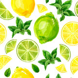 Seamless pattern with citrus fruits. Lime, lemon and mint Stock Photos