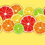 Seamless pattern with citrus fruits slices. Mix of lemon lime grapefruit and orange.  vector illustration