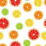 Seamless pattern with citrus fruits slices. Mix of lemon lime grapefruit and orange.  royalty free illustration