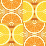 Seamless pattern with citruses Stock Images
