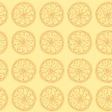 Seamless pattern. Citruses on yellow background. Royalty Free Stock Photography
