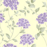 Seamless  pattern1309 Royalty Free Stock Image