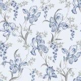 Seamless pattern1309 Stock Image