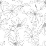 Seamless pattern with Clematis flowers. Vector Illustration