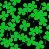 Seamless pattern with clover leaves Royalty Free Stock Photography