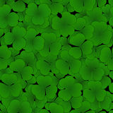 Seamless pattern with clover leaves. Seamless pattern green clover leaf on black background Royalty Free Stock Images