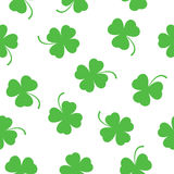 Seamless pattern of clover leaves Stock Photography