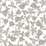 Seamless pattern with clover. Monochrome hand-drawn  backg Stock Photo