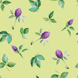 Seamless pattern of clover Royalty Free Stock Photos