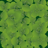 Seamless pattern with clovers Stock Photo