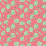 Seamless pattern of cloves Stock Images