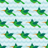 Seamless pattern with colibri on striped wave blue background. Stock Images
